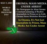 OromiaMassMediaUnderArrest2013