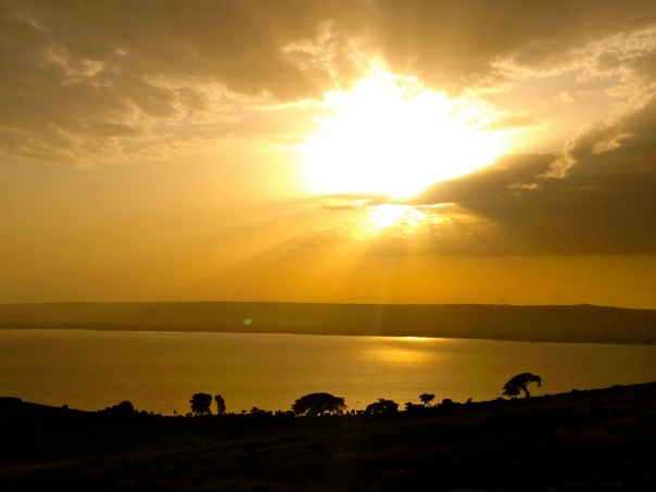 Bariituu Oromia