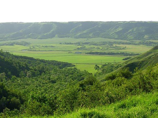 Oromia Landscape