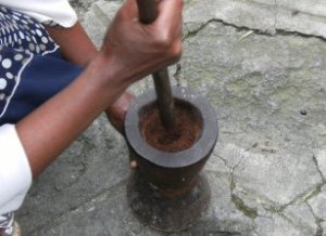 grinding the roasted coffee with a traditional Oromo mortar