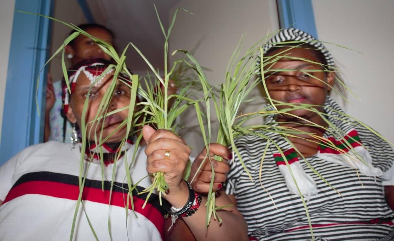 "The culture: go forward with ""Ilaa fi Ilaamee"" (dialogue"